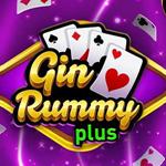 Gin Rummy Card