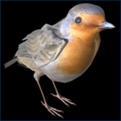 Spiritual Meaning Of Bird Tapping On Window