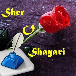 Hindi Shayari Pro