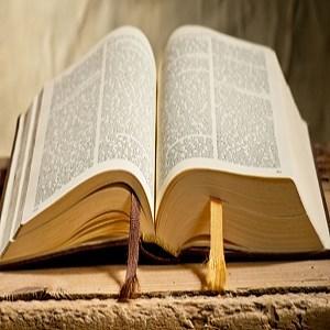 Get GoodNews Bible App - Microsoft Store