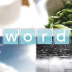 Pics and Word Puzzles