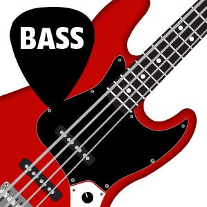 Bass Lessons Beginners