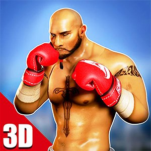 Boxing Fight King